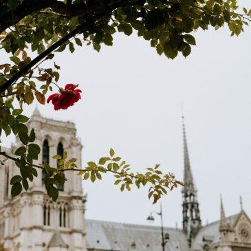 A Prayer for Notre Dame in Paris – Une Prière pour Notre Dame en Paris