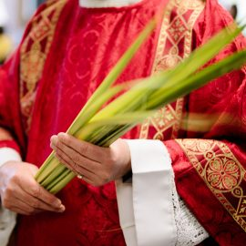 Bulletin Shorts for Palm Sunday of the Lord's Passion