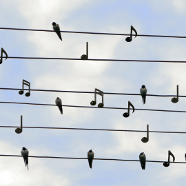 More than just singing the right notes
